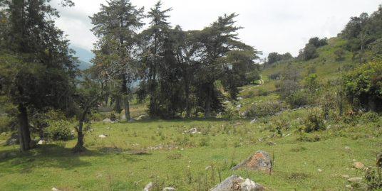 Terreno en Mérida, El Valle, Sector Alto viento