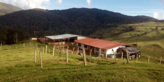 Finca en Mérida, sector Paramito Mistaja.